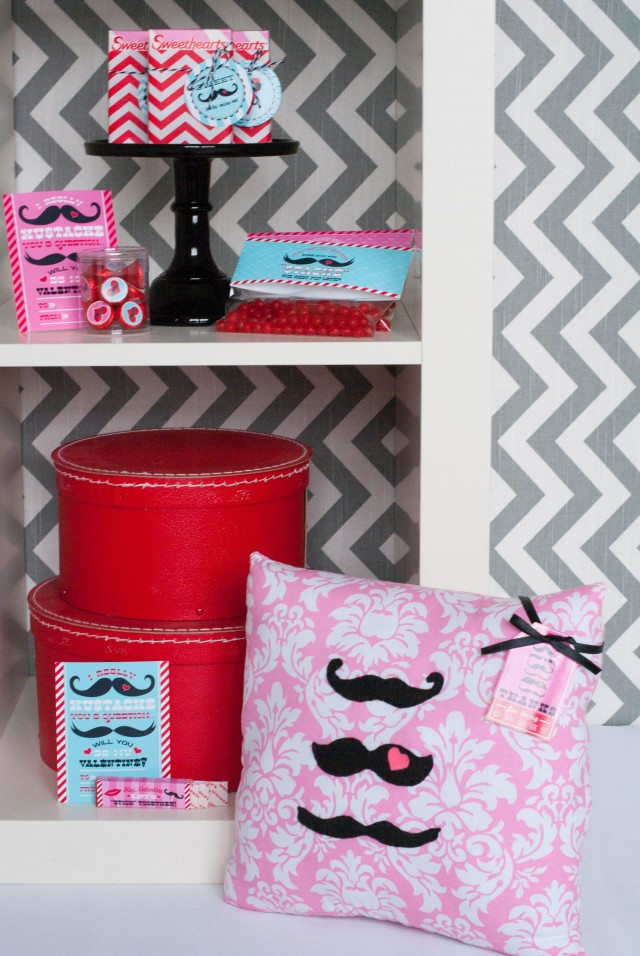 mr-mrs-valentine-mustache-pillow-favor-tag-photo-shoot