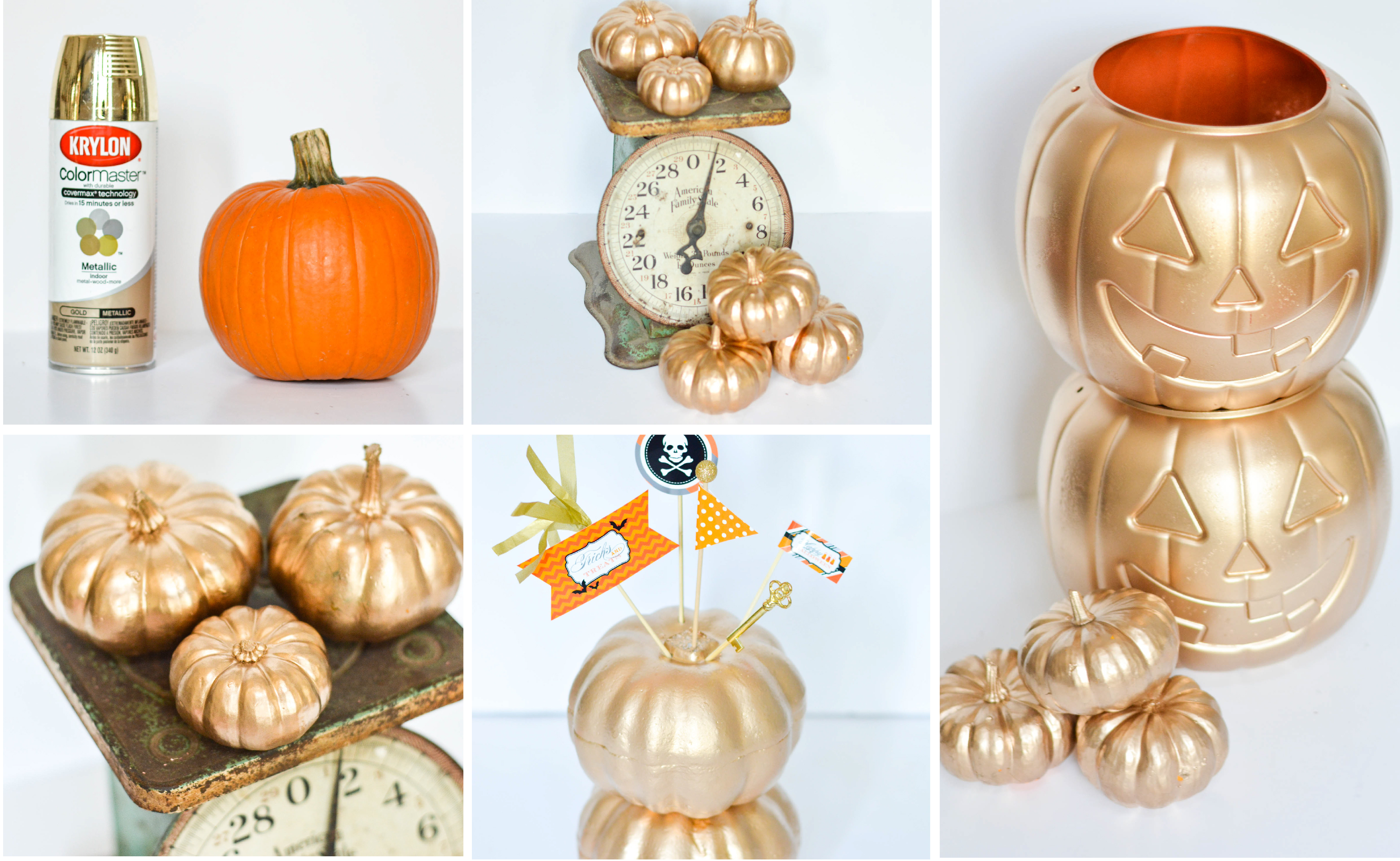 ruff draft gold pumpkins galore - Plastic Pumpkins