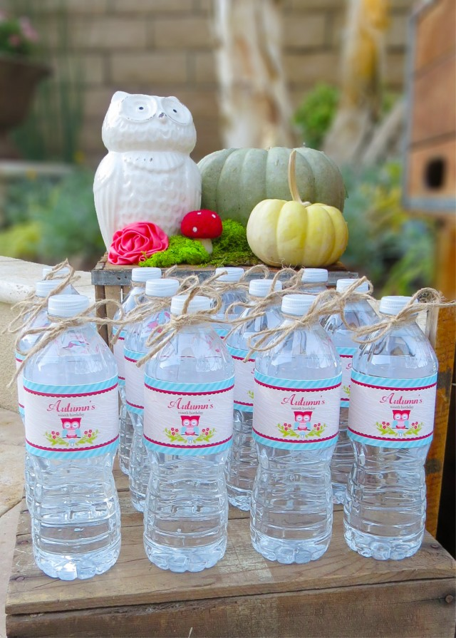 owl water bottles