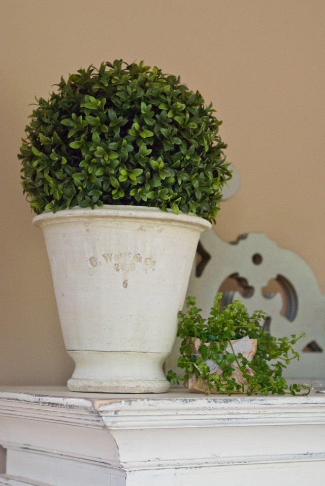 Indoor Plants And My Favorite Farmhouse Style Pots By Guy