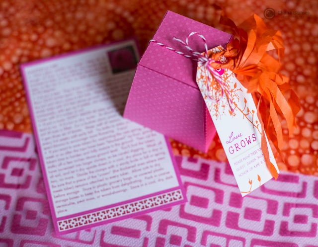 Indian-Inspired-Engagement-Party-Invitation