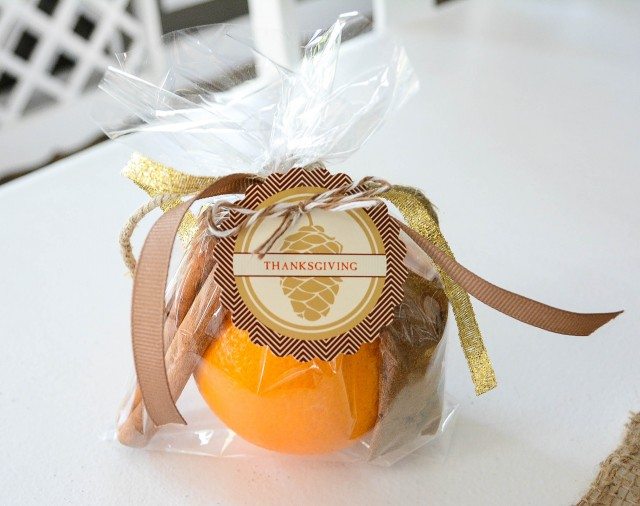 Thanksgiving DIY Potpourri Party Favor